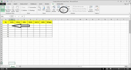 Freeze Panes di Microsoft Excel